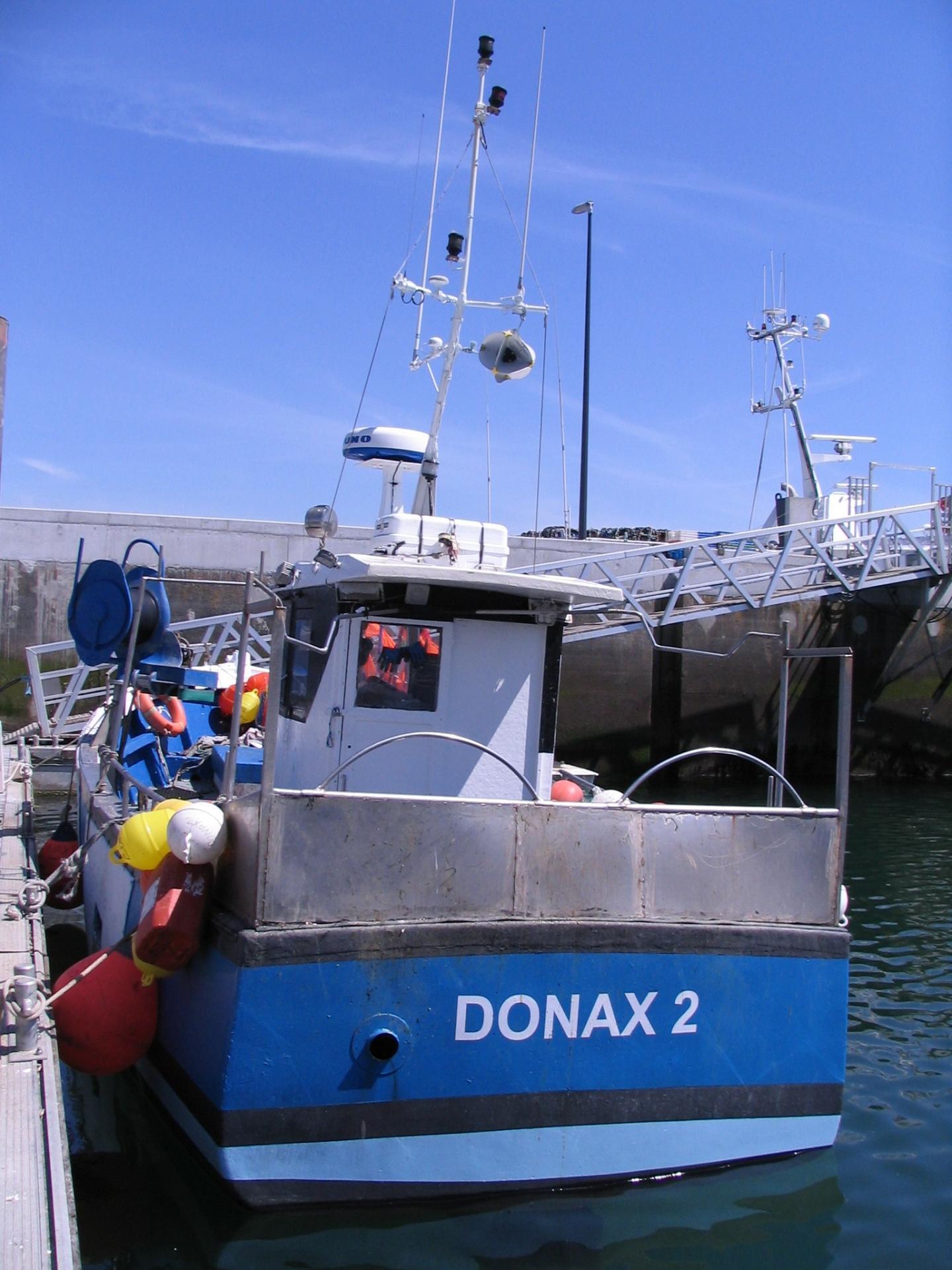 200516 donax 2 quai 2