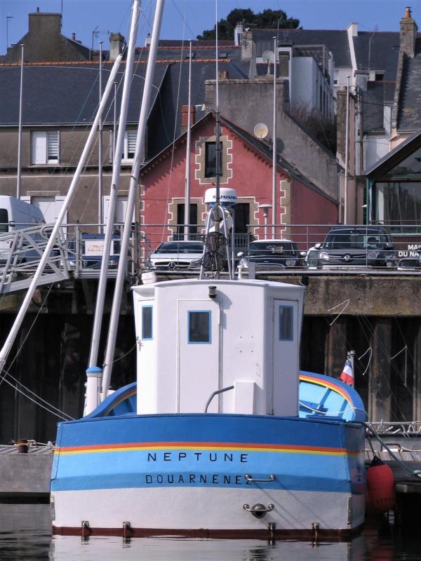 Neptune dz 2