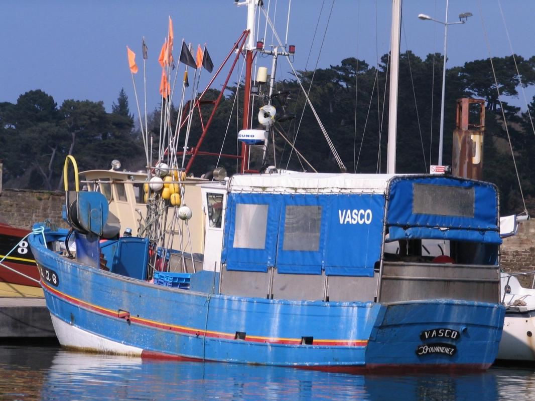 Vasco 1