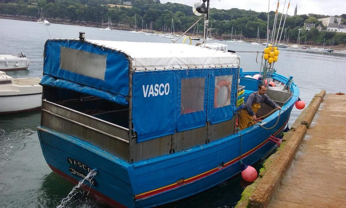 Vasco dz